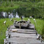 Schweden - Holzsteg am Opfermoor, mit Tierschädeln