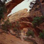 USA - Canyonlands natürliche Steinbrücke