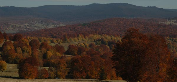 Schamanismus e.V. in Rumänien - Landschaft Asociatia Samanism