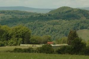 Forschungsreise Rumänien 2016 - Grundstück mit Zaun inmitten der Natur