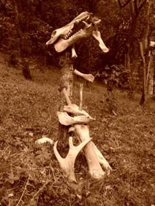 Naturgeister - Holzpfahl mit Tierknochen geschmückt