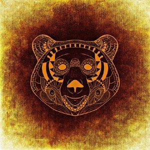 Gesicht eines Bären - Darstellung von einem Krafttier