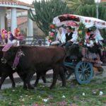 Sardinien - Umzug mit Ochsenkarren