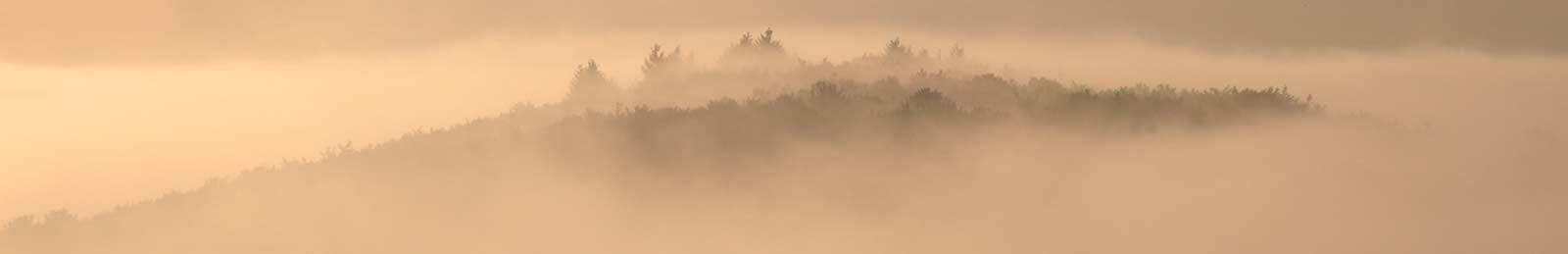 Achtsamkeit, eine-Spurensuche - Bewaldeter Hügel im Nebel.