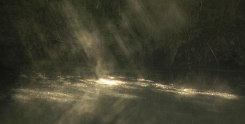 Die Art der Geister - Sonnensstrahlen, die auf einen Teich im Morgennebel fallen