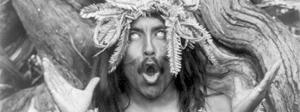 Schamanismus - Interpretationen und die Definition der Welt - Schamane mit Astkrone, singend